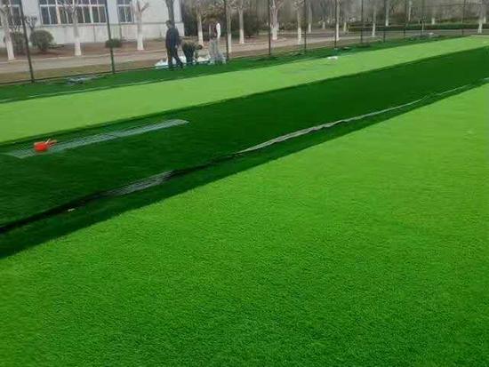 足球场草坪施工中